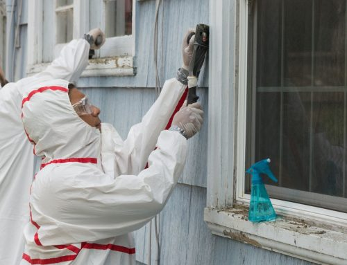 Asbestos and Lead – Two Potentially Deadly Hazardous Materials